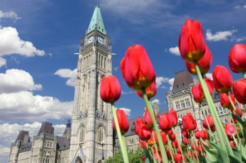GEOS Ottawa